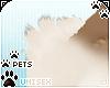[Pets] Kimi | shldr tuft