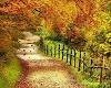 Beautiful Autumn Scenery
