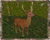 ⚡ Red Mule Deer
