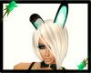 Bunny Ears-Green Luv