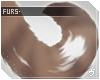 ヴ. Coley | Tail v3