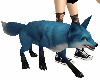 *blue fox pet