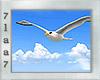 Animated Seagull