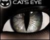 [SIN] Cat's Eye - Grey
