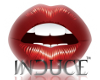 [BAM]InduceSupport