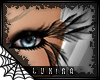 [*L] Lashes | wings
