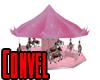 Pink Carosel