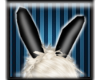 *Bunny Ears- Blk&Wht*