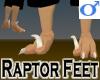Raptor Feet -Male v1a