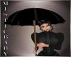 ~M~ M Poppy Umbrella