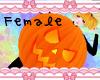 R| Pumpkin Costume F