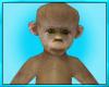 Fun Baby Monkey