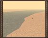 [Ry] Wanderers desert.