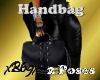[B69]Hand Bag w/2 Poses