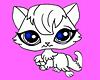 Kitten Tee Top
