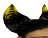 gold&black ears