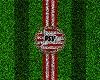 PSV Eindhoven Field