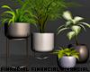 Monochrome Planter