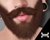 ♛.Beard.BR
