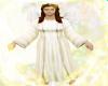 ~C~Golden Angel Fly
