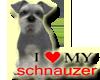 [BB] I LOVE SCHNAUZER