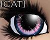 {CAT}Fragile-Candy Eyes