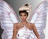 SL Butterfly Wings