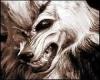 Evil Wolf Growl