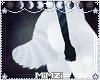 ☪»Raiz I Tail 2.0