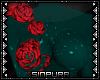 S; Midori Body Roses Top