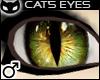  SIN  Cat's eye - Green