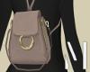 Taupe Designer Backpack