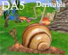 (A) Snail