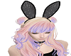 {Z} Bedazzled Bunny F