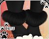 [Pets]Zorro |ankle fluff