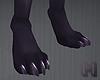 STEELO Claw Feet M