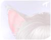 Nyx | Tail 4