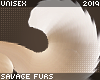 . Fennec   tail