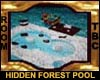 Hidden Forest Pool