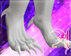 White Clawed Dragon Feet