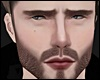 Elvis II - Rose MH