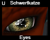 Schwertkatze Eyes