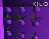 """ Lit Plants"