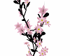 ~[S]~ Pk Flower Blk Vine