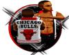 {CA} Bulls Vest