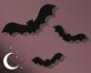 .Bat. aura