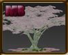 [6V2] TREES