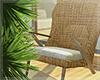 Tropicana - Chair