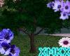 xMKx I Spring R. Tree