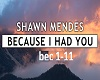 Shawn- Because I Had You